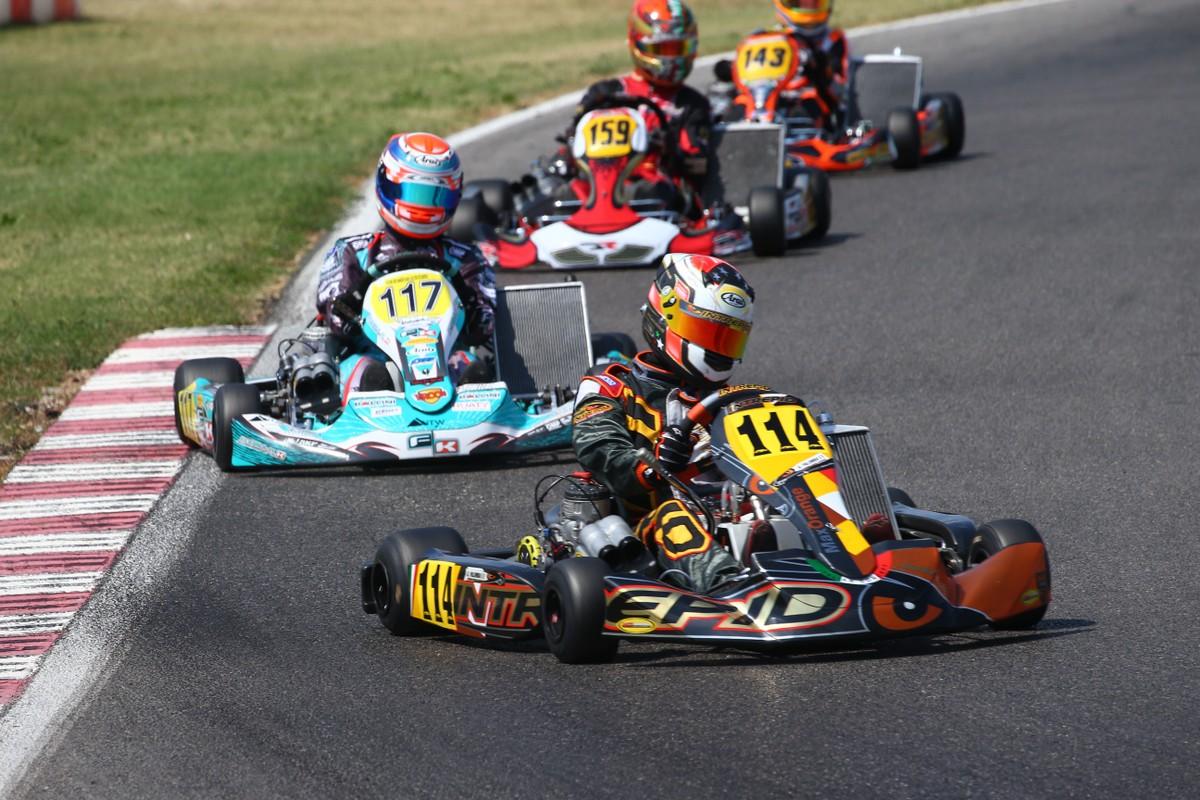 Viti Racing - Viti racing